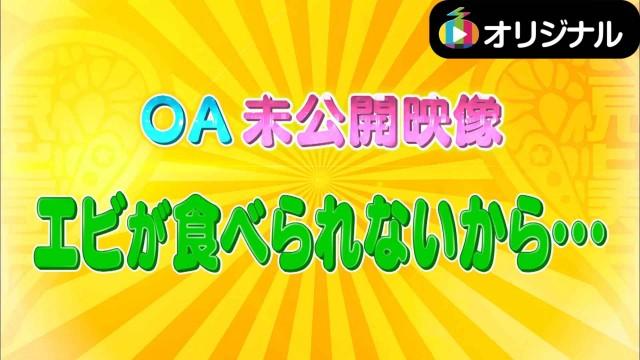 エビ中++ 未公開映像(2015.5.21)