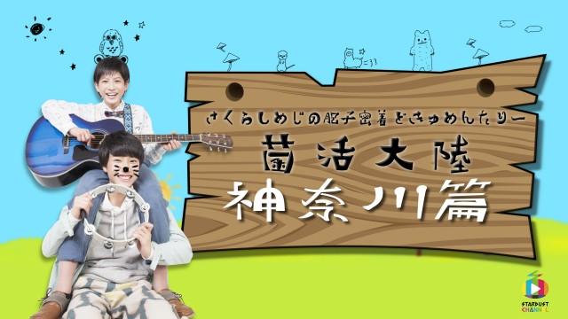 さくらしめじ 菌活大陸 神奈川篇