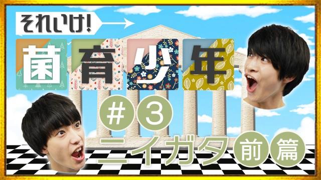 さくらしめじ「それいけ!菌育少年!」#3 新潟前篇