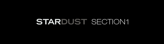 STARDUST SECTION1
