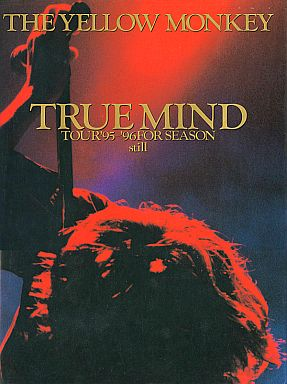 TRUE MIND TOUR'95-'96 FOR SEASON:still