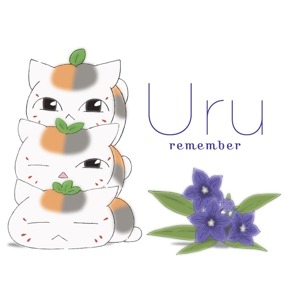 6th Single「remember」【期間限定生産盤(アニメ盤)】